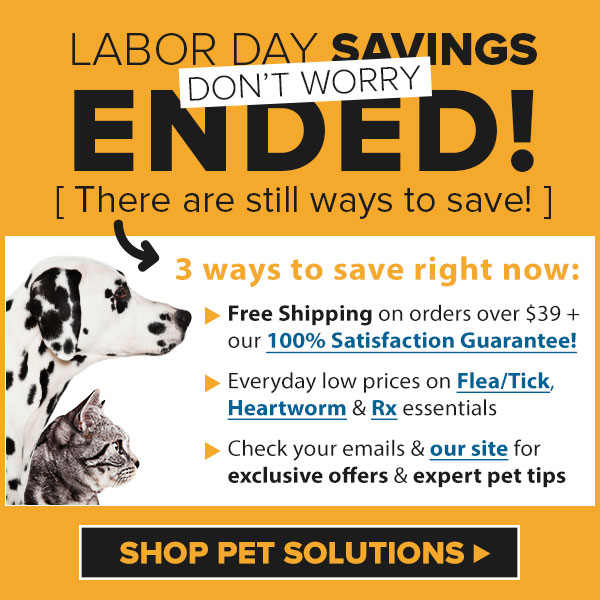 EXTENDED - Labor Day Deals!